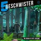 31: Im Urwald der Träume (MP3-Download)