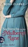 Nachwuchs in der Mulberry Lane (eBook, ePUB)