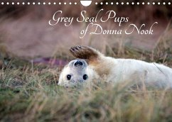 Grey Seal Pups of Donna Nook (Wall Calendar 2022 DIN A4 Landscape)