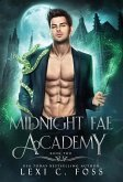 Midnight Fae Academy: Book Two