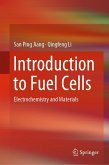 Introduction to Fuel Cells (eBook, PDF)