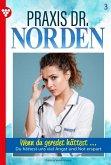 Praxis Dr. Norden 3 - Arztroman (eBook, ePUB)