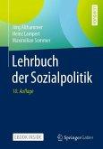 Lehrbuch der Sozialpolitik (eBook, PDF)