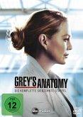 Grey's Anatomy - Die komplette siebzehnte Staffel