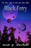 Black Entry (eBook, ePUB)