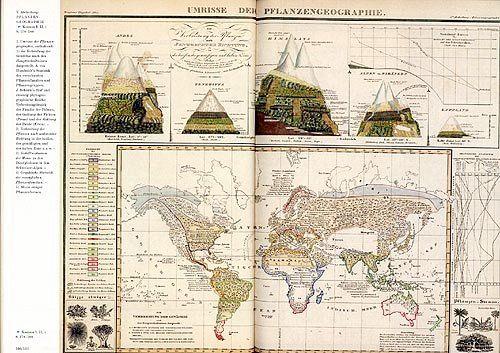 Buch Alexander Von Humboldt