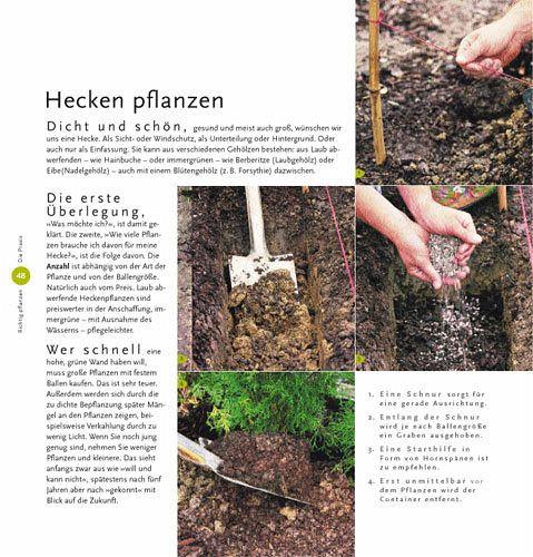 Das Gartenbuch für Anfänger  Die ersten Schritte · Die Praxis so