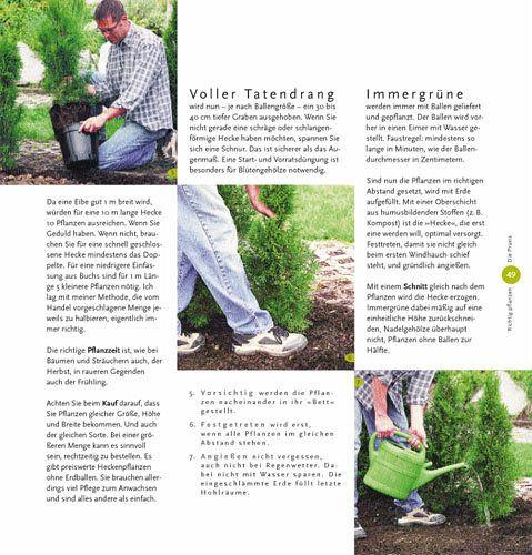 Pflegeleichter Garten Wolfgang Hensel : Das Gartenbuch für Anfänger  Die ersten Schritte · Die Praxis so