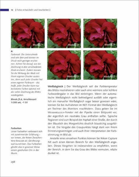 Das Kamerahandbuch Nikon D60 von Ulrike Häßler; Wadim Herdt - Buch ...