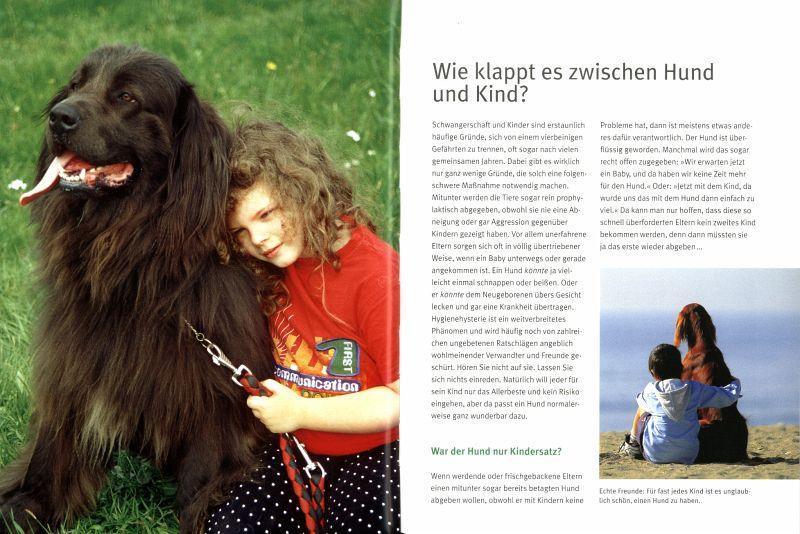 Gl 252 Cklich Mit Hund Von Claudia Ludwig Buch Buecher De