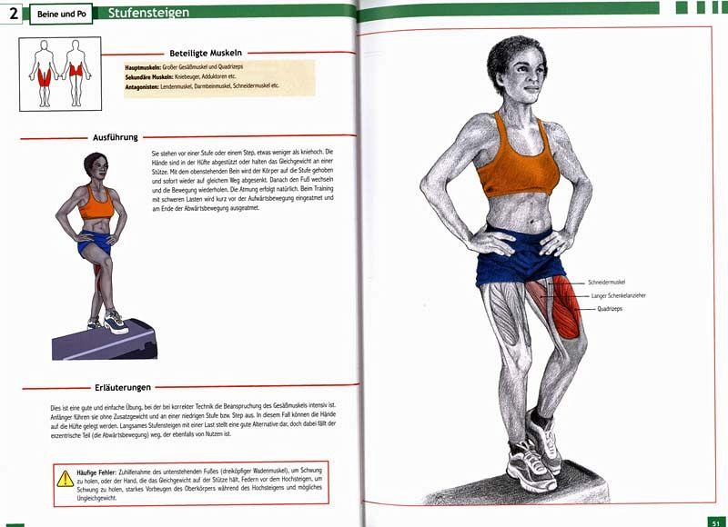 Enzyklopädie Bauch - Beine - Po (Restexemplar) von Oscar Morán ...
