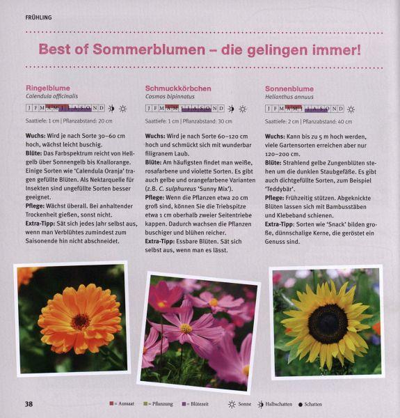 Garten Basics - Gärtnern Für Anfänger Von Mascha Schacht - Buch ... Gartnern Fur Anfanger