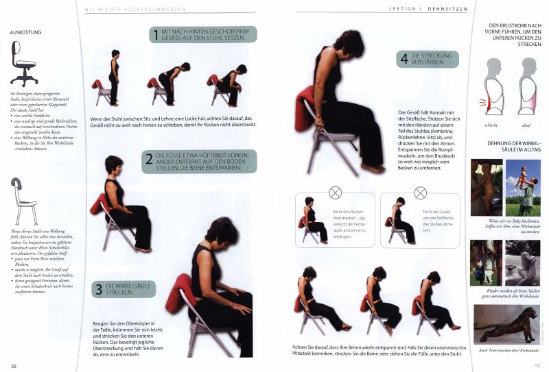 Nie wieder Rückenschmerzen von Esther Gokhale; Susan Adams - Buch ...