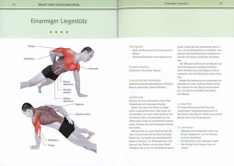 Fit ohne Geräte - Anatomie von Mark Lauren - Buch - bücher.de