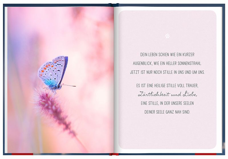 Hervorragend Kleiner Engel, Für Immer In Unserem Herzen Von Irmgard Erath  XB32