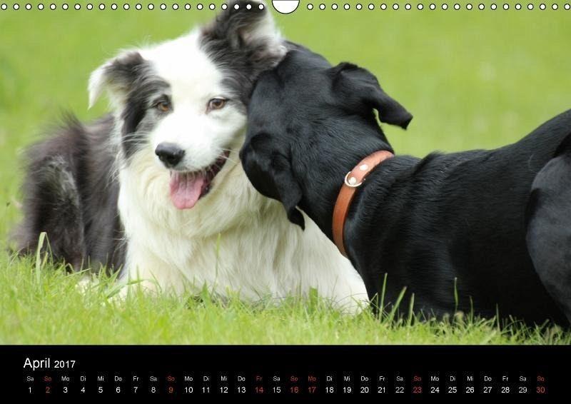 schwarze hund seine freunde wandkalender.
