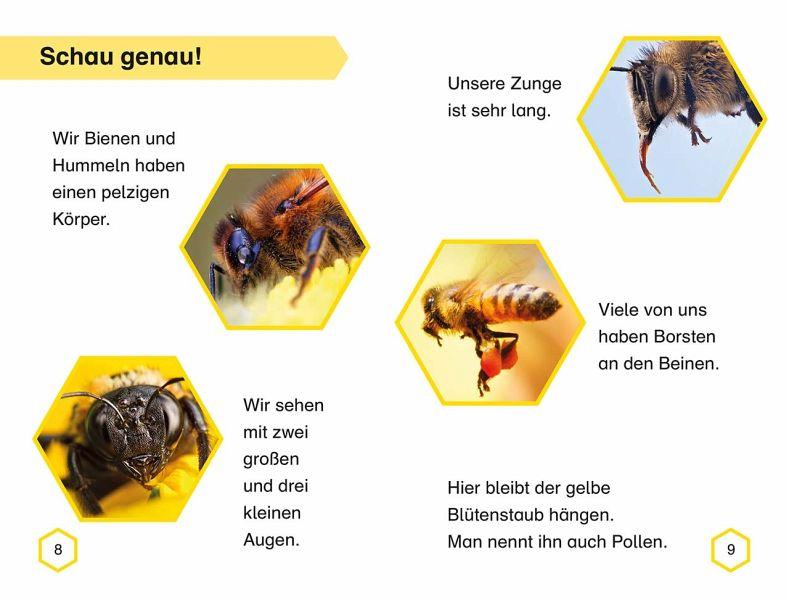 Arbeitsblatt Bienen Grundschule : Superleser flieg los kleine biene buch buecher