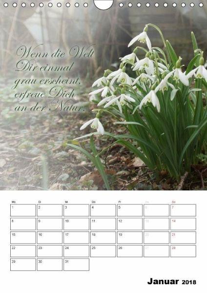 schöne sprüche kalender