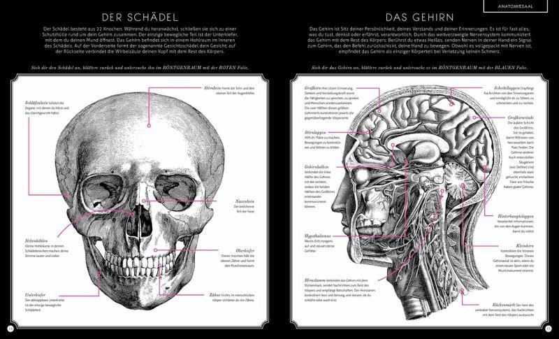 Der menschliche Körper von Carnovsky; Kate Davies - Buch - bücher.de