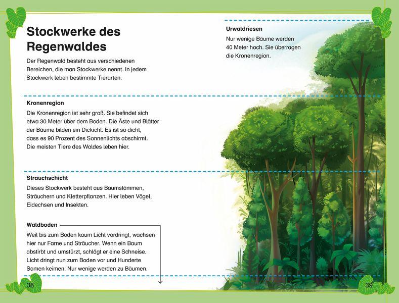 SUPERLESER! Abenteuerferien im Regenwald (Mängelexemplar) - Buch ...