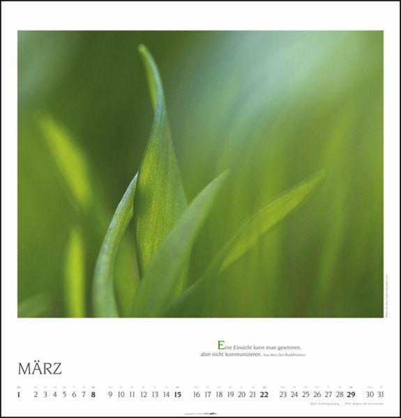 Natural Zen Kalender 2020
