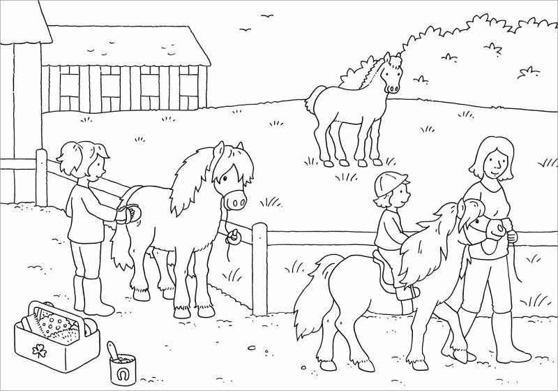 mein schönstes malbuch pferde und ponys malen für kinder